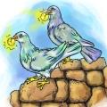 Zaczarowane gołębie 1