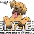 Koszulka 1 - wektory, dla Dogów
