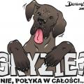 Koszulka 2 - wektory, dla Dogów