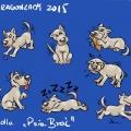 Psia Brać - maskotka