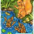 Iwi i raczki