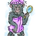 Małpa w kąpieli 2