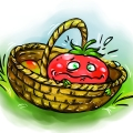 Pomidor 2