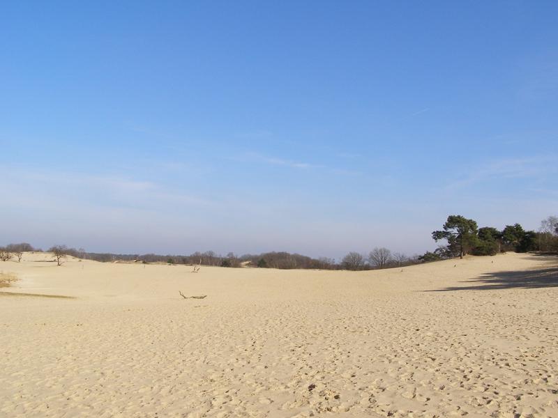 Jeszcze więcej piasku...