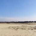 Dużo piasku.